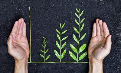 6 Questions on Sustainable Investing That You Need to Ask Your Financial Advisor